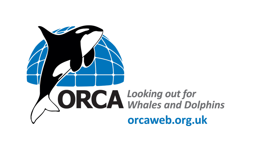 ORCA-LOGO-with-web